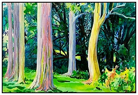 Rainbow Eucalyptus Water Color