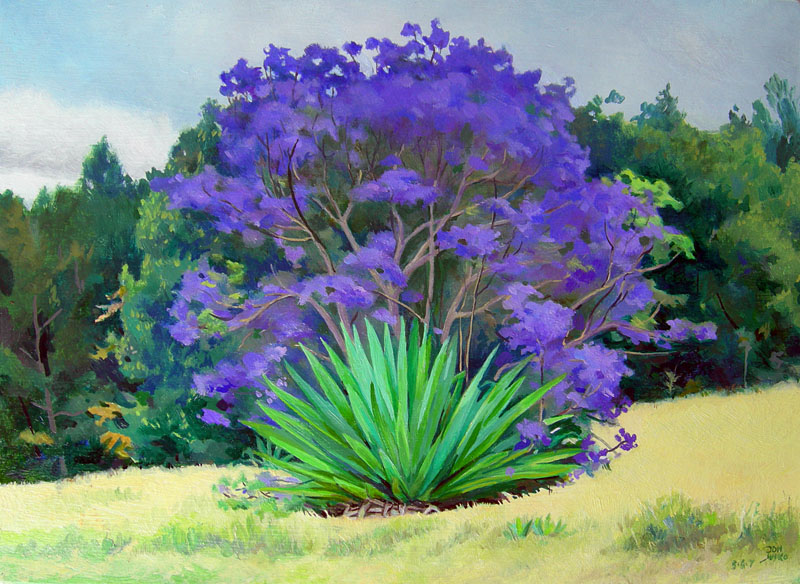 Jacaranda and Century Plant, Maui, Hawaii