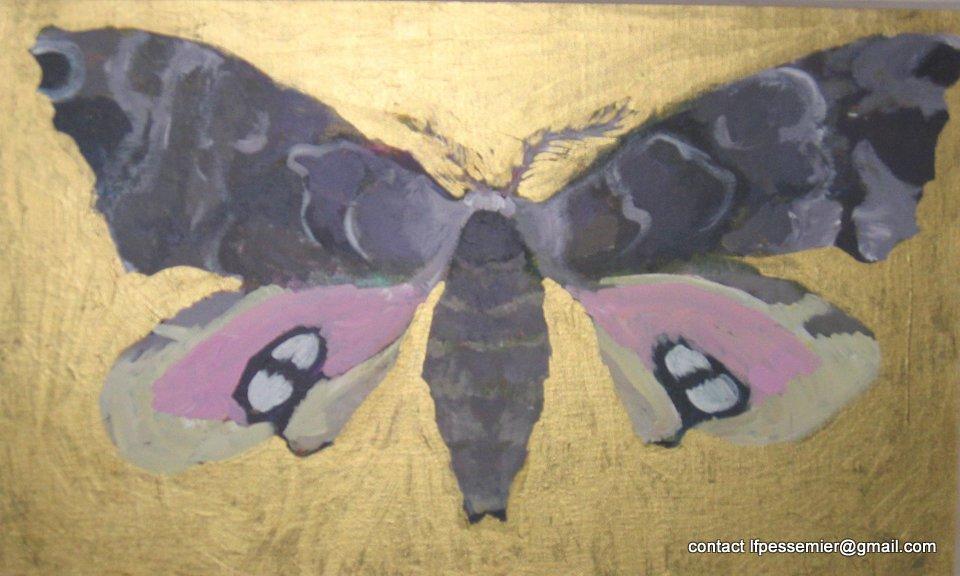 Laurie1-moth3-2-13.jpg